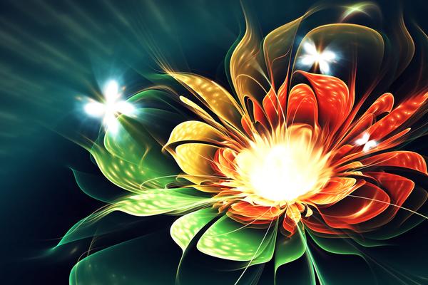 Fractal de fleurs et papillons