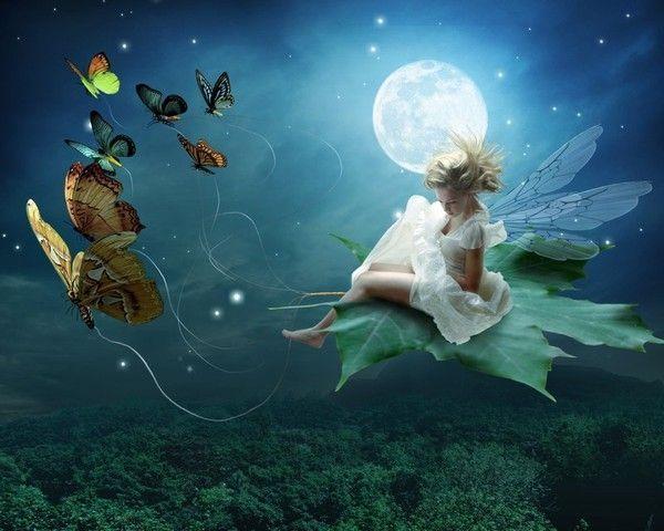 Fée des papillons