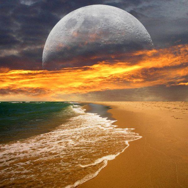 Paysage magique de plage