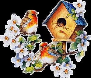 Tube oiseaux et nichoir