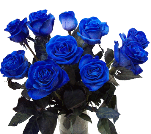Tube rose bleu