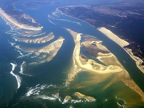 Ma région le Banc d'Arguin en Gironde (33)