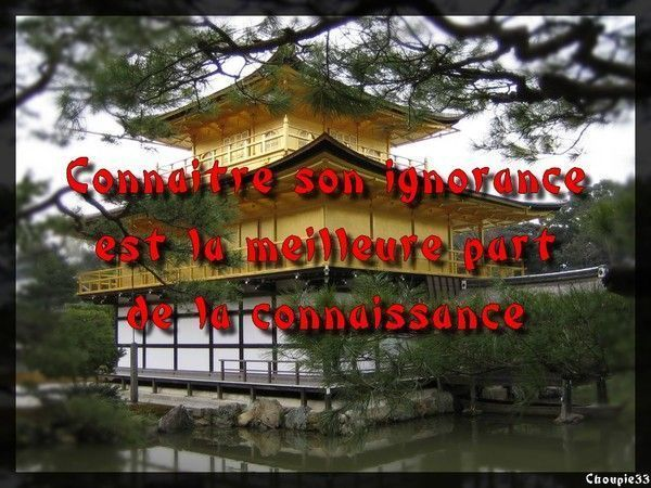 Proverbe chinois du jour