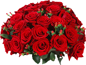 TUBE bouquet de roses rouge