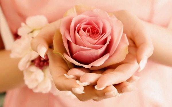 Une rose pour vous...