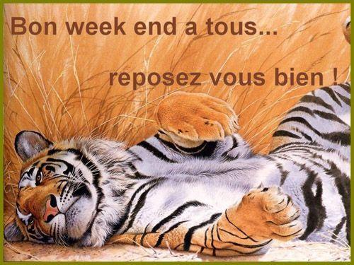 Week end page 6 - Bon week end a tous ...