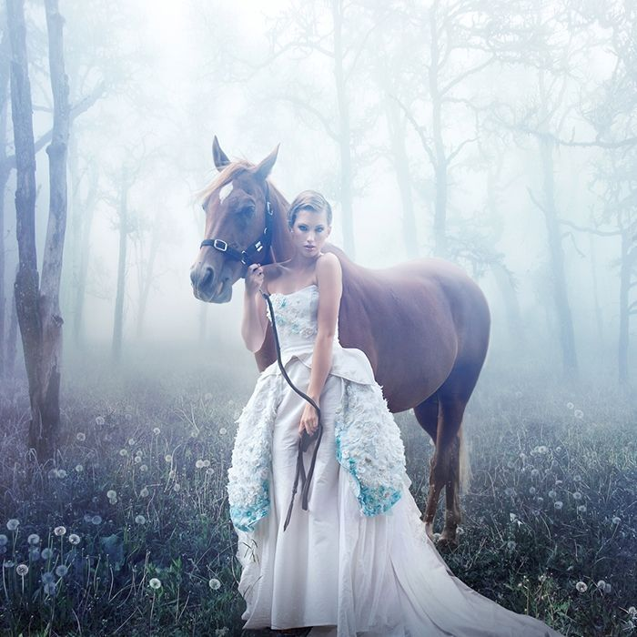 Princesse et son cheval - Princesse cheval ...