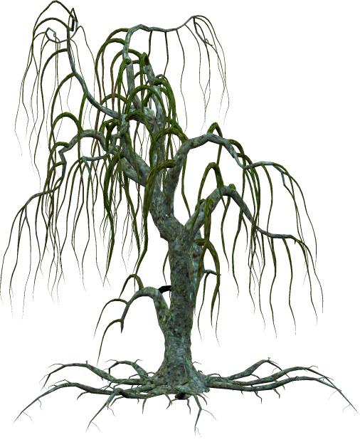 TUBE arbre sans feuille