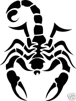 dessin scorpion